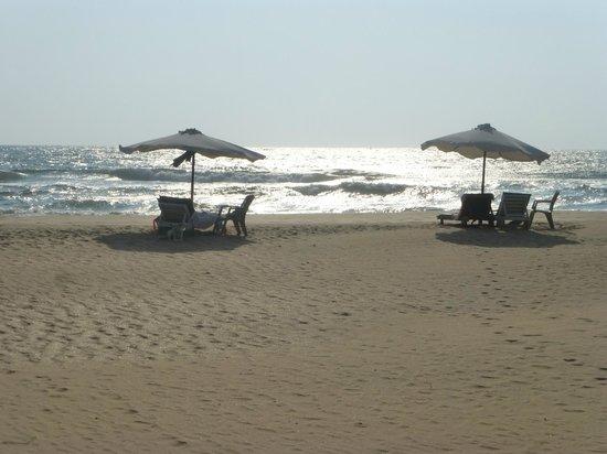 Wunderbar Beach Club Hotel: Wish I was there now !Bentota beach
