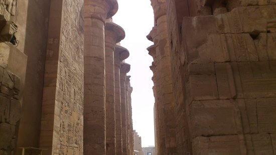 Egypt on the Move Day Tours:                   Ancient Egypt...magical!