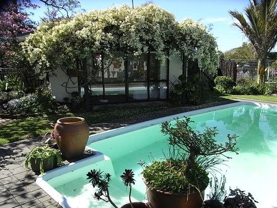 Ashcroft Gardens Bed & Breakfast:                   poolroom