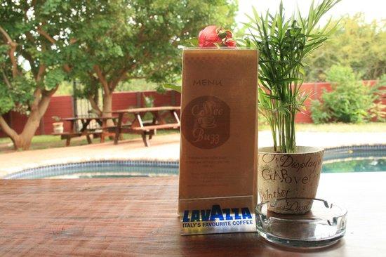 The Coffee Buzz: view into the garden
