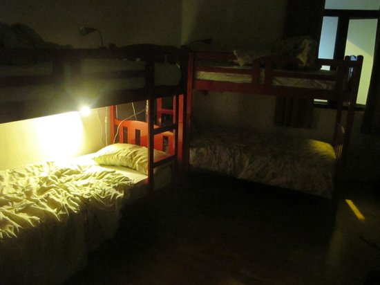 The Green Kiwi Backpacker Hostel:                   Family room