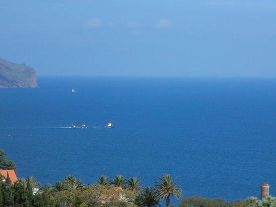 Dorisol Buganvilia:                   Udsigten over det Porto Funchal og Atlanterhavet