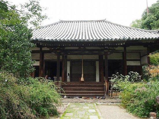 Nara, Japan:                   静かなお寺ですが、萩の時期は観光客で賑わっています