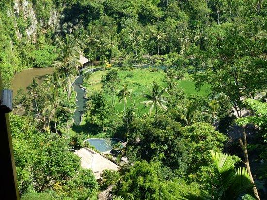The Royal Pita Maha:                   Ayung Gorge from Villa 138