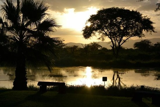 Voyager Ziwani, Tsavo West:                   the river dam viewed with hippos from the restaurant