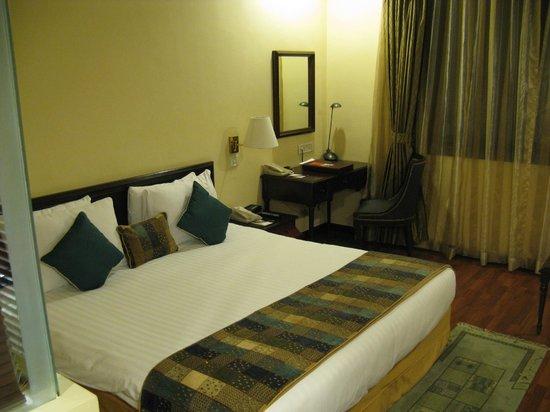 โรงแรมคราวน์ พลาซา กาฐมัณฑุ: Camera
