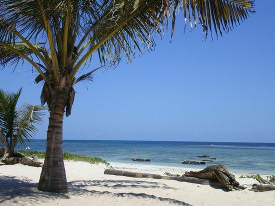AfroChic Diani: Beach - white sand