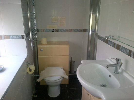 Lamphey Hall Hotel : Family Room Bathroom
