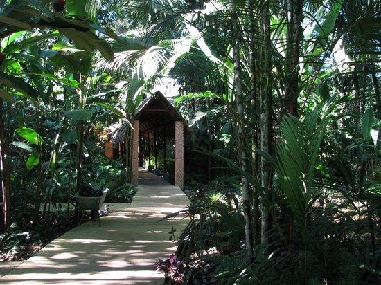 Hotel Shawandha Lodge: Walkway to front desk
