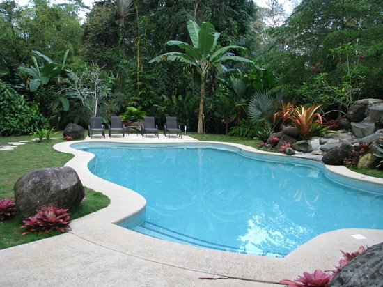 Hotel Shawandha Lodge: The pool