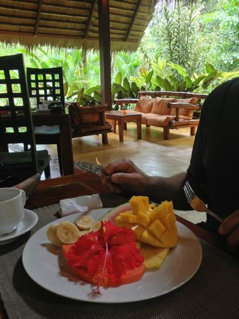 Hotel Shawandha Lodge: Our breakfast