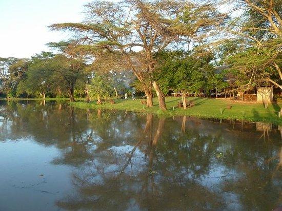Voyager Ziwani, Tsavo West:                   Peacefull setting of the camp