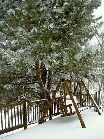 Burlington, IA: Snow on the Swing