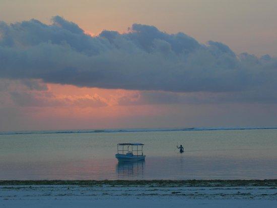 Nyota Beach Bungalows:                   L'alba