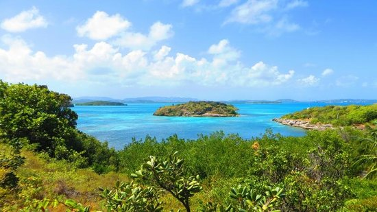 Paddles Snorkel and Kayak Eco Adventure:                   Antigua - View where we snorkel.