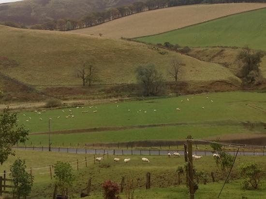 Drochil Castle Farmhouse:                                     Vue depuis l'avant de la maison sur les collines environnant