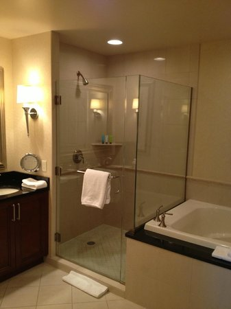 Signature at MGM Grand:                   Large shower