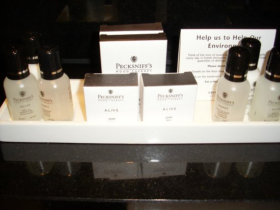 Crowne Plaza London Kensington:                   good selection of toiletries