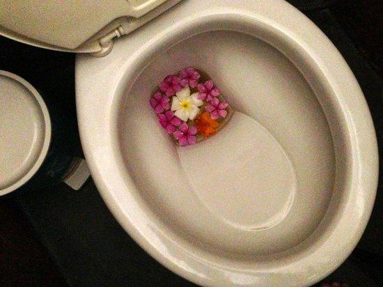 Pousada Xama: We don't usually take photos of our room toilet