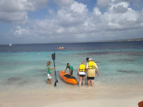 Glass Bottom Boat and Kayak Snorkel Tours: Kayak Excursion