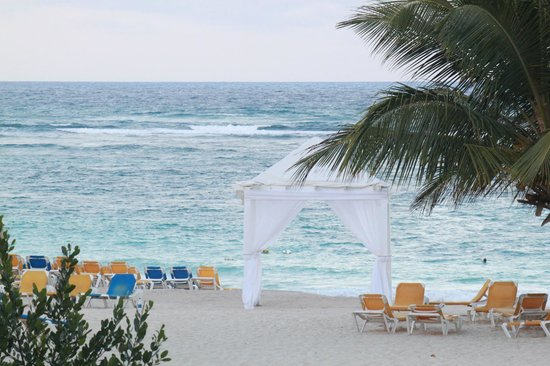Ocean Blue & Sand: where the weddings happen