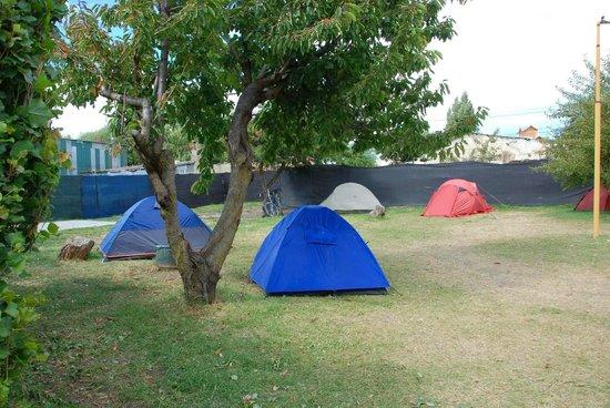 Jardin camping picture of los dos pinos el calafate for Camping el jardin alicante