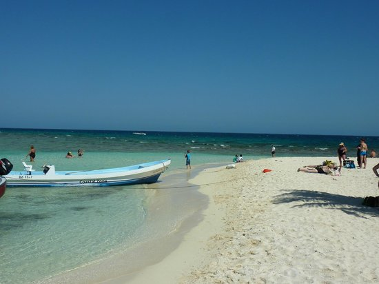 Our Island At Goff S Caye Picture Of Belize Cruise Excursions Goff S Caye Beach And