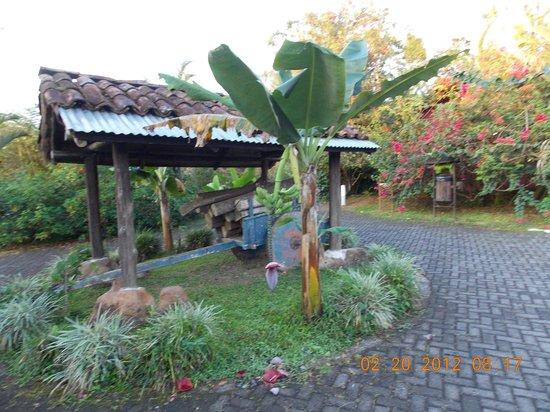 Hotel Mountain Paradise:                   ego park
