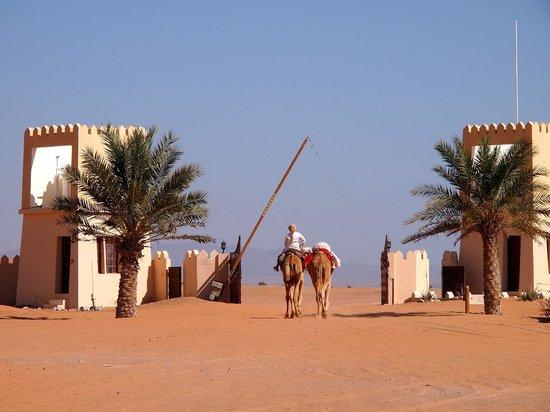 Desert Nights Camp: entrée du camp