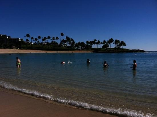 Aulani, a Disney Resort & Spa: a view from the beach chair
