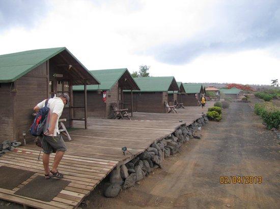 Floreana Lava Lodge :                   Cabins