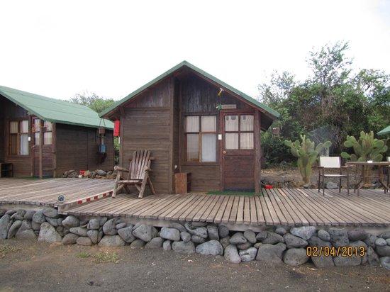 Floreana Lava Lodge :                   Cabin
