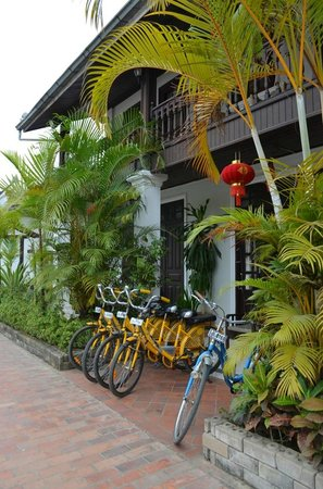 Villa Senesouk:                   Bikes for rent
