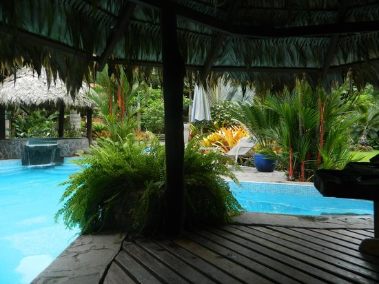 Hotel Banana Azul:                   Island in the pool area where you can relax in a hammock