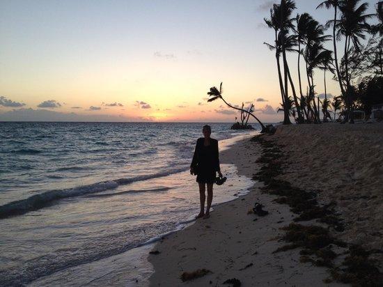 Vista Sol Punta Cana:                   Dotheking