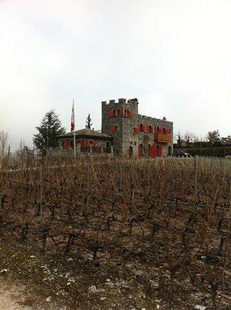 Colline de Daval : Castel de Daval