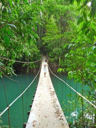 La Paloma Lodge:                                     Puente que une la Paloma con el pueblo