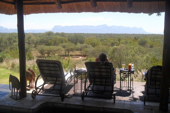 Khaya Ndlovu Manor House:                   View from the pool, overlooking the bush