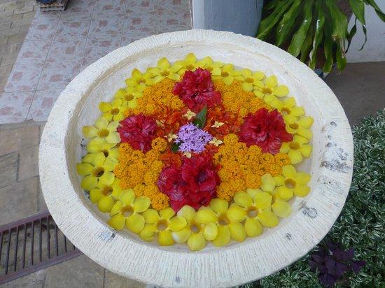Colibri Guest House:                   dekoration
