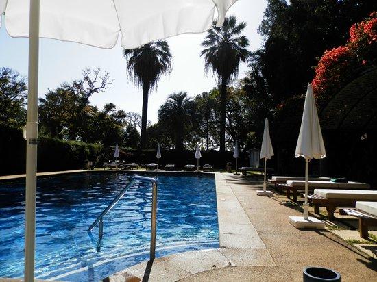 Quinta da Casa Branca:                   Poolside