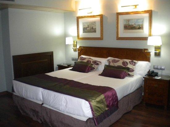 Hotel Plaza Andorra :                   habitación