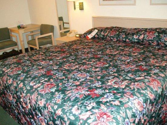 Super 8 Blanding: Large bed