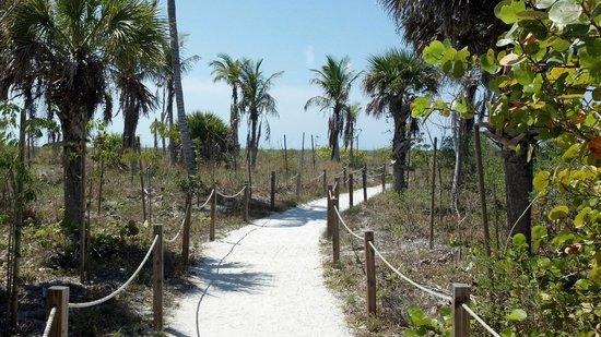 Blind Pass Condominiums:                                     Walkway to beach