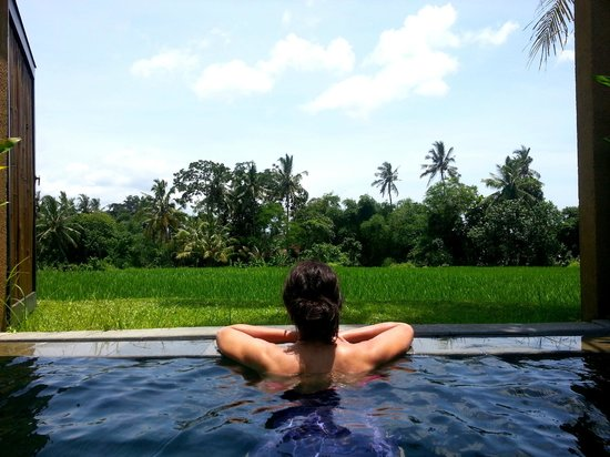 The Chedi Club Tanah Gajah, Ubud, Bali – a GHM hotel :                   Our secluded pool view