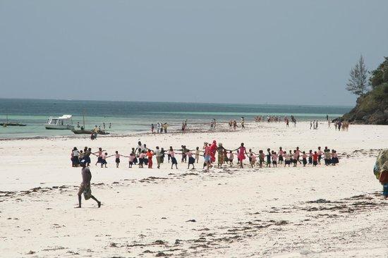 Ocean Village Club:                   Schulausflug (Bitte Spenden nach Ukunda)