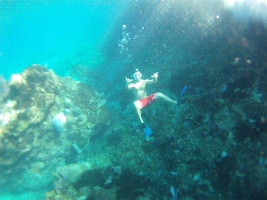 Grand Bahia Principe El Portillo :                   Snorkling