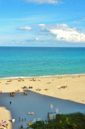 Hilton Singer Island Oceanfront/Palm Beaches Resort:                   Hilton Singer Island Beach