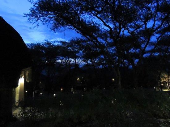 Serengeti Serena Safari Lodge: The sky at night
