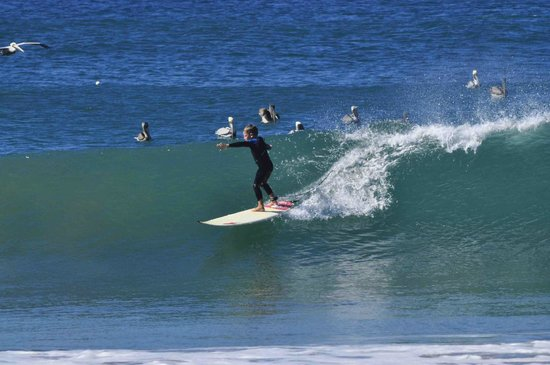 Las Plumerias Lodge and Surf:                   Nice crowd