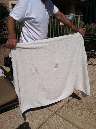 سكوتسديل ريزورت آند أثليتيك كلوب:                   old towels at poolside with holes in them                 